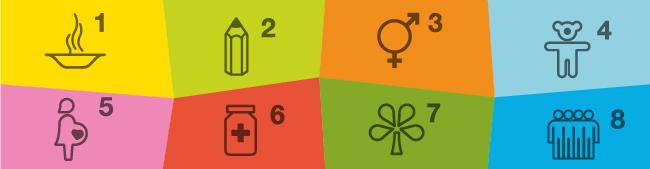 The 8 Millennium Goals